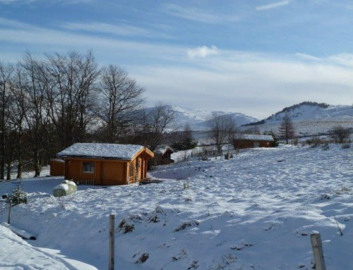 Scotsview Winter