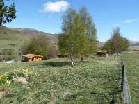 Scotsview, Clashmore and Cragdhu Log Cabins